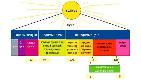 http://celebniymir.ru/images/upload/4668855b6.jpg